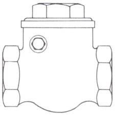 3222S Swing Check Valve - Unscrewed